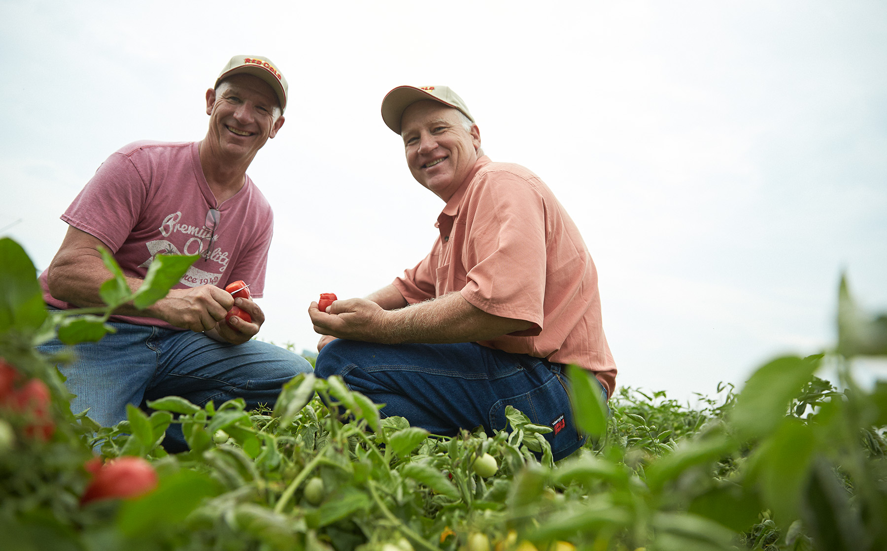 Image of the AcMoody Farms family growers for Red Gold Tomatoes brothers