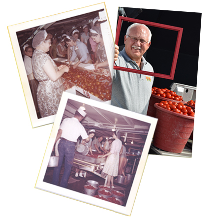 Red Gold tomatoes history images